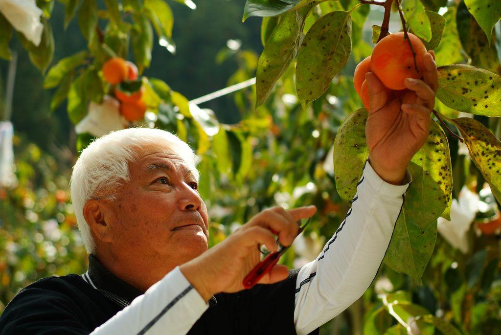 里山でレッツ農業体験!6次産業化にも挑戦してみよう。【子どもゆめ基金2021年度採択事業】